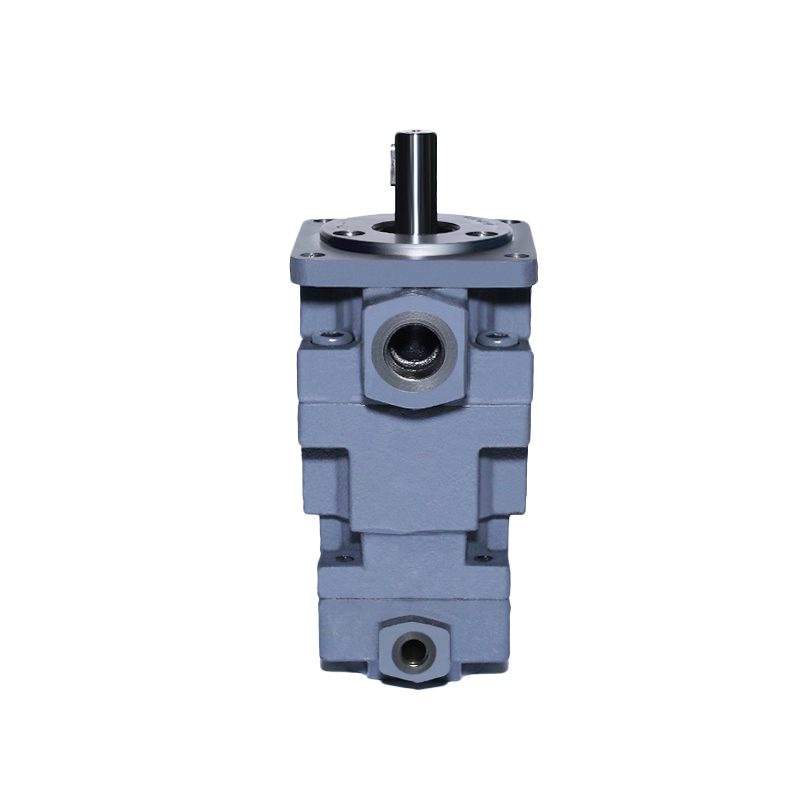 CP21 Vane Pumps with Middle Pressure