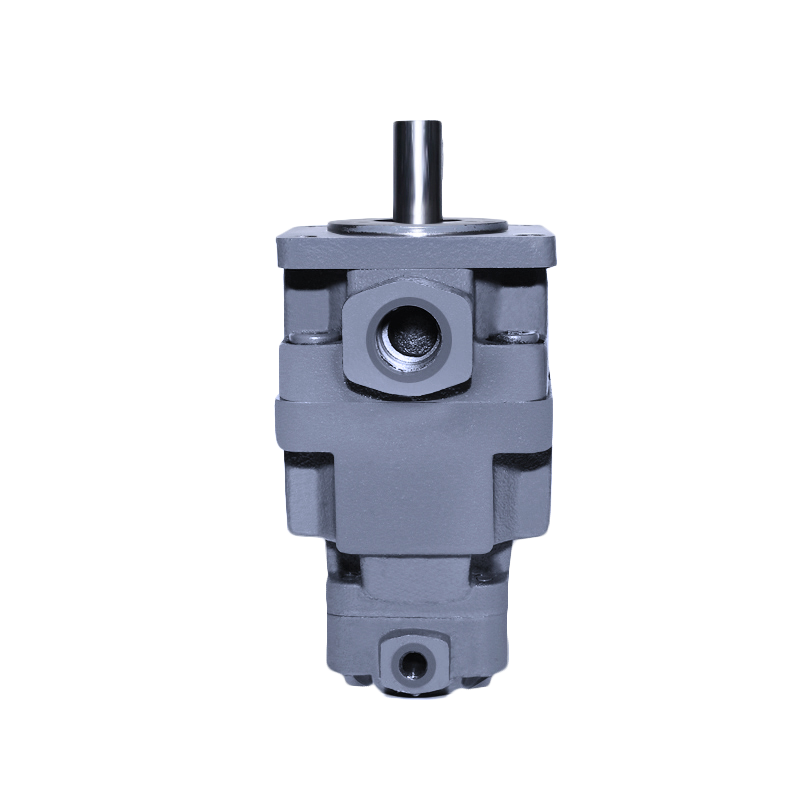 DP31 Vane Pumps with Middle and High Pressure